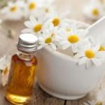 camomille-romaine-huile (DR) TTQTP(