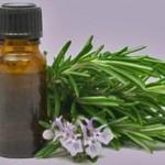 huile-essentielle-arbre-a-the(DR) TTQTP